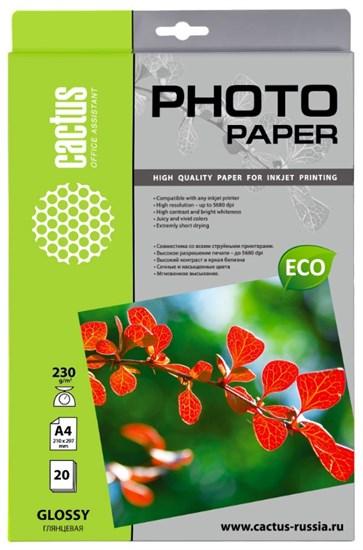 Бумага Cactus CS-GA423020E, A4, глянцевая, 230 г/м2, 20л - фото 11420