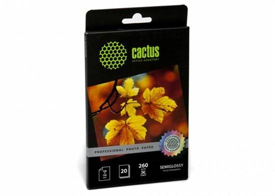 Бумага Cactus CS-SGA626020, A6 10х15 см, полуглянцевая, 260 г/м2, 20л - фото 6442